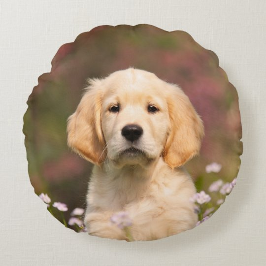 Cute Golden Retriever Dog Puppy Portrait - smooth Round Pillow