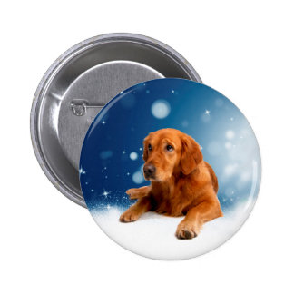 Cute Golden Retriever Dog Sitting in Snow Stars 2 Inch Round Button