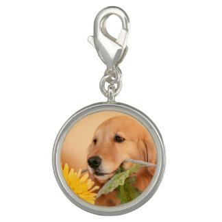 Cute Golden Retriever Dog With Yellow Flower Charm