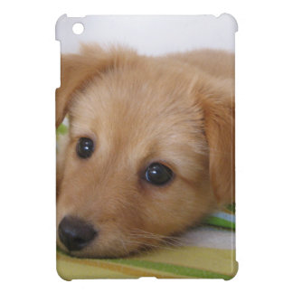 Cute Golden Retriever Puppy Cover For The iPad Mini