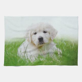 Cute Golden Retriever Puppy Dog Green Grass Kitchen Towel