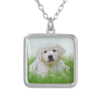 Cute Golden Retriever Puppy Dog Green Grass Silver Plated Necklace