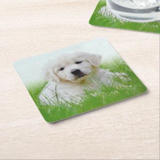 Cute Golden Retriever Puppy Dog Green Grass Square Paper Coaster