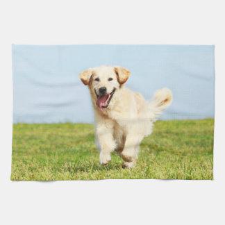 Cute Golden Retriever Puppy Running on Grass Kitchen Towel