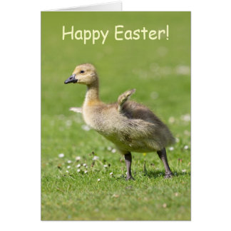 Cute Gosling Happy Easter Greeting Card Card