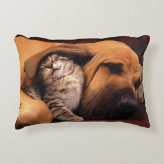 Cute Gray Kitten and Brown Dog Pillow