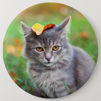 Cute Gray Kitty with Leaf on Head 6 Inch Round Button
