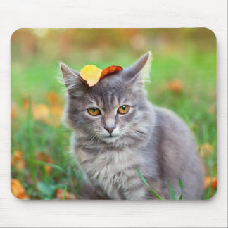 Cute Gray Kitty with Leaf on Head Mouse Pad