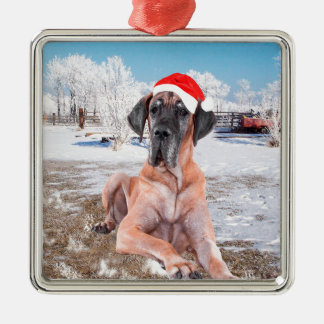 Cute Great Dane Dog Sitting In Snow Christmas Hat Silver-Colored Square Ornament