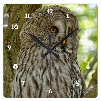 Cute Great Grey Owl Print Wall Clock