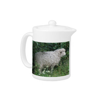 Cute Greedy Sheep Eating Teapot