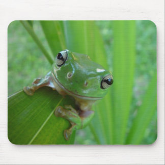 Cute Green Candid Frog On The Leave Mouse Pad