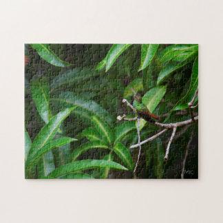 Cute Green-Emerald Hummingbird Puzzle