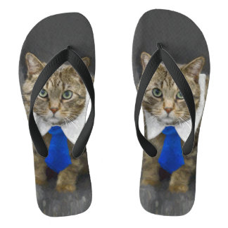 Cute green-eyed brown tabby cat wearing a blue tie flip flops