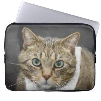 Cute green-eyed brown tabby cat wearing a blue tie laptop sleeve