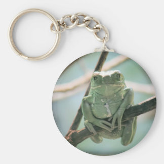 Cute Green Frog Sitting on a Branch Basic Round Button Keychain