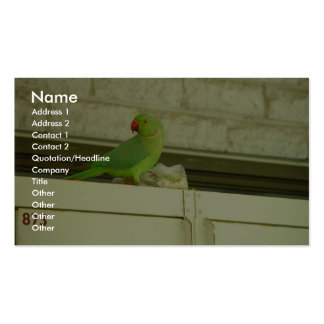 Cute Green Parrot On The Cupboard Business Card