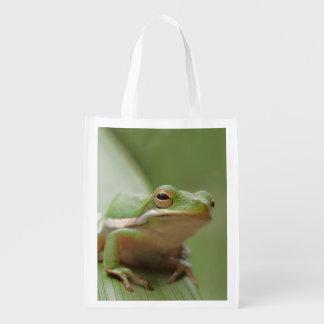 Cute Green Tree Frog Foldable Reusable Bag Market Totes