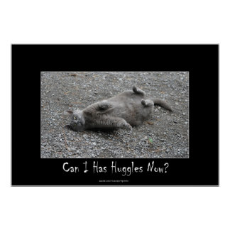 Cute Grey Cat Funny Huggles Poster