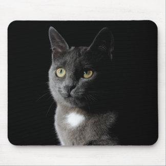 Cute grey cat mouse pad