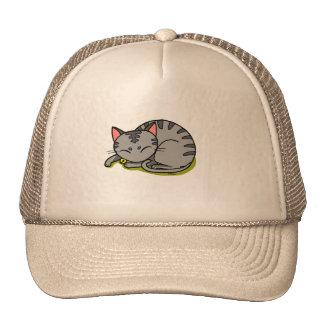 Cute grey cat sleeping mesh hats