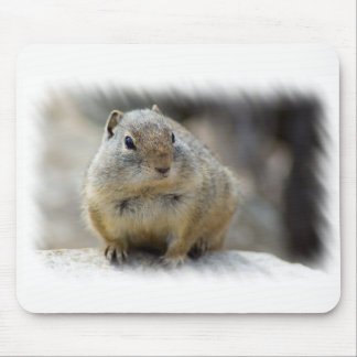 Cute Ground Squirrel Mouse Pad