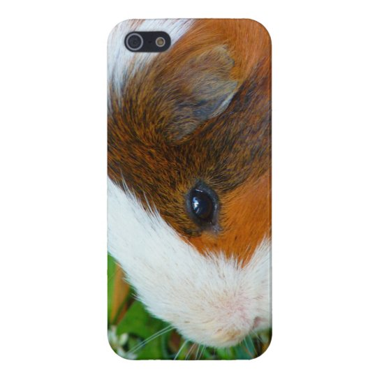 Cute Guinea Pig Cover For iPhone 5/5S