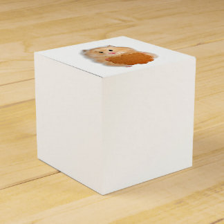Cute hamster with biscuit illustration gift favor box
