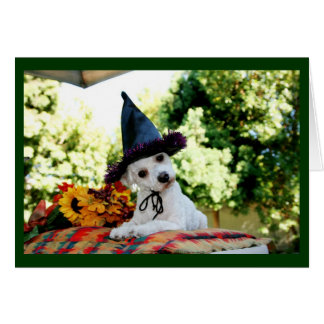 Cute Happy Thanksgiving Dog Greeting Card