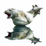 CUTE HARBOR SEAL (sculpted) Wildlife Art Gift Item Photo Cutout