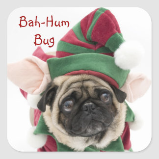 Cute Holiday Pug Stickers