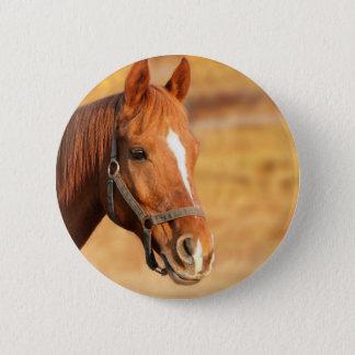 CUTE HORSE 2 INCH ROUND BUTTON