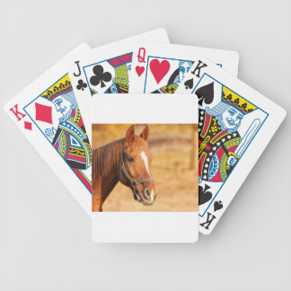CUTE HORSE BICYCLE PLAYING CARDS