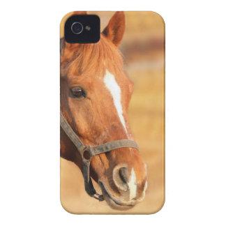 CUTE HORSE Case-Mate iPhone 4 CASES