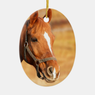 CUTE HORSE CERAMIC ORNAMENT