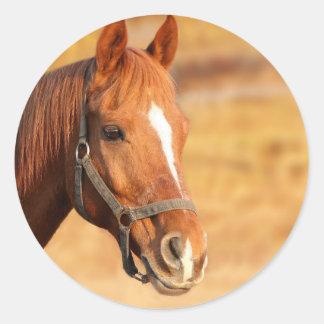 CUTE HORSE CLASSIC ROUND STICKER