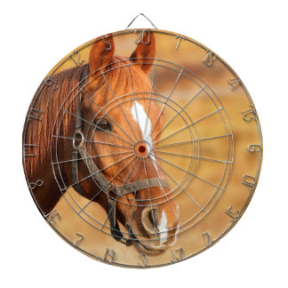 CUTE HORSE DARTBOARD