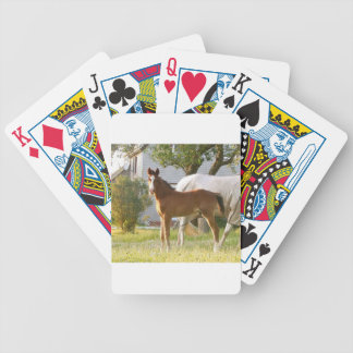 CUTE HORSE FOAL AND MARE BICYCLE PLAYING CARDS