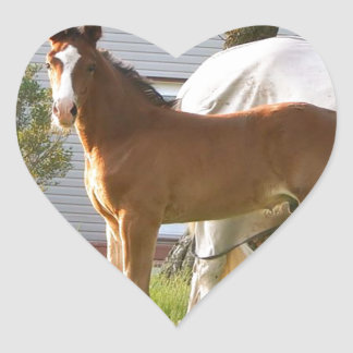 CUTE HORSE FOAL AND MARE HEART STICKER