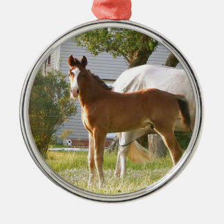 CUTE HORSE FOAL AND MARE METAL ORNAMENT