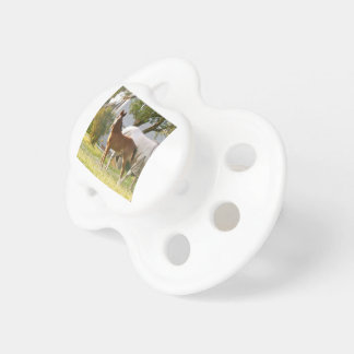 CUTE HORSE FOAL AND MARE PACIFIER