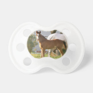 CUTE HORSE FOAL AND MARE PACIFIERS