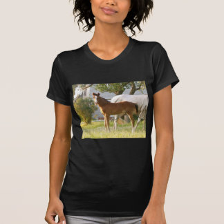 CUTE HORSE FOAL AND MARE T-Shirt