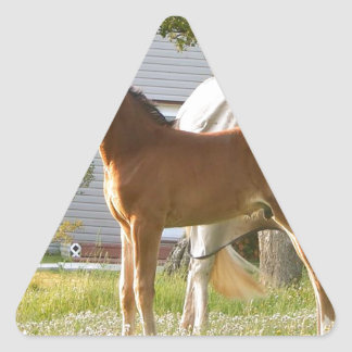 CUTE HORSE FOAL AND MARE TRIANGLE STICKER