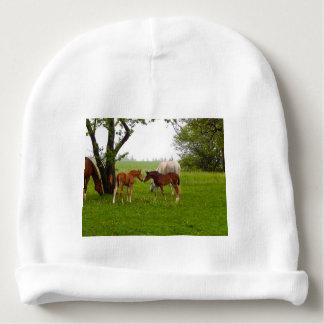 CUTE HORSE FOALS BABY BEANIE