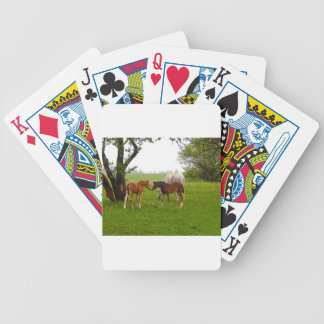 CUTE HORSE FOALS BICYCLE PLAYING CARDS