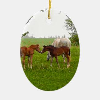 CUTE HORSE FOALS CERAMIC ORNAMENT