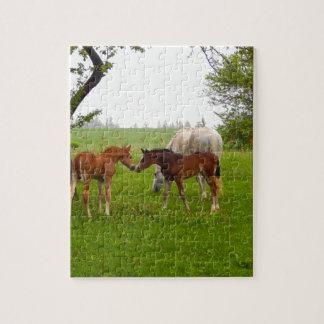 CUTE HORSE FOALS JIGSAW PUZZLE