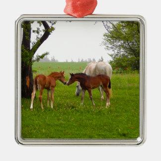 CUTE HORSE FOALS METAL ORNAMENT