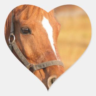 CUTE HORSE HEART STICKER